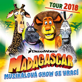 MADAGASKAR - MUZIKÁLOVÉ DOBRODRUŽSTVÍ 2018 (Plzeň)