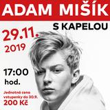 ADAM MIŠÍK - koncert s kapelou