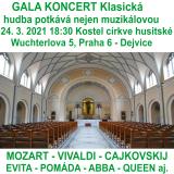 GALA KONCERT klasická hudba potkává nejen muzikálovou hudbu