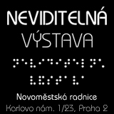 Neviditelná výstava - Dárkový poukaz na 60 min. neviditelné masáže